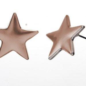 Earrings, Star, Stud